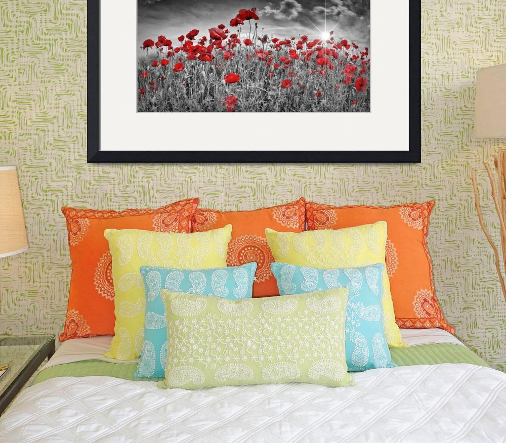 """Idyllic Field of Poppies with Sun&quot  (2016) by MelanieViola"