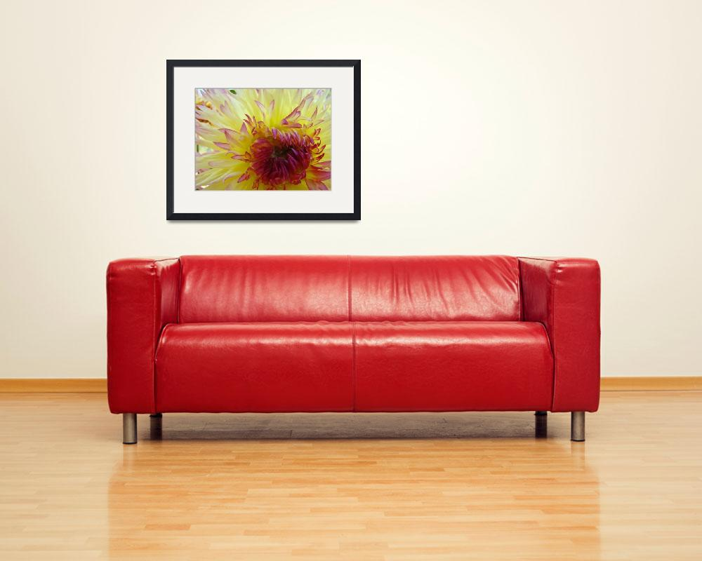 """Yellow Red tipped Dahlia Flower Floral&quot  (2011) by BasleeTroutman"
