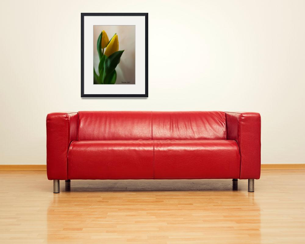 """Yellow Tulips in my House&quot  (2011) by bleij50"