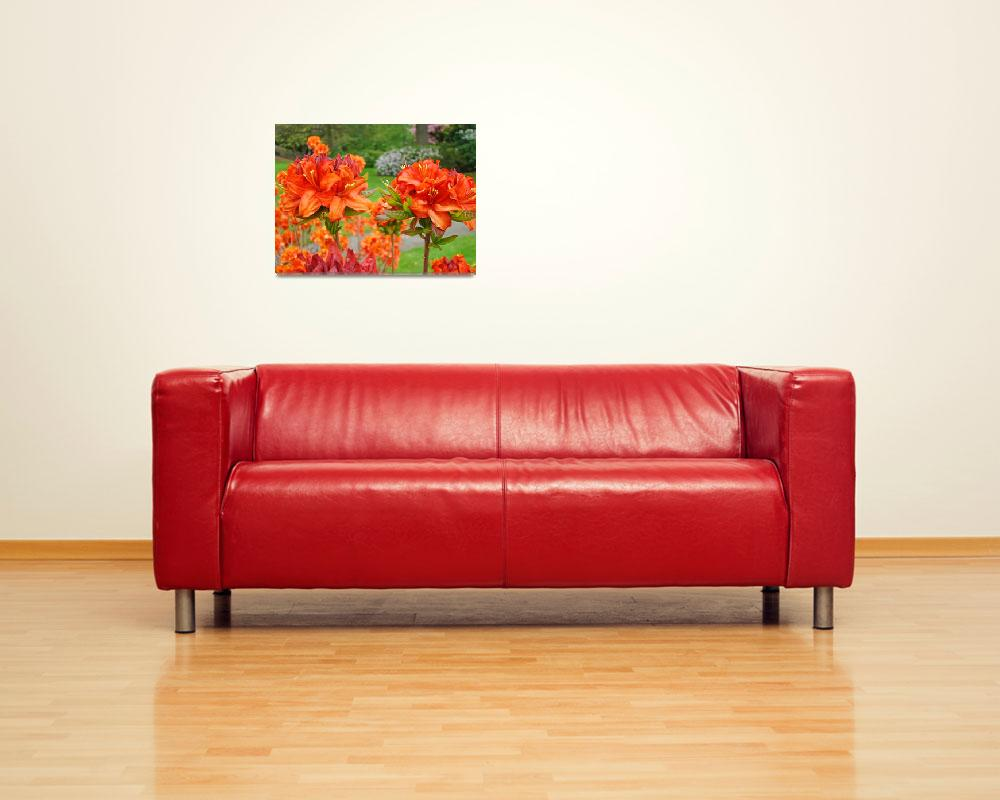 """Rhododendrons art print Orange Rhodies Landscape&quot  (2010) by BasleeTroutman"