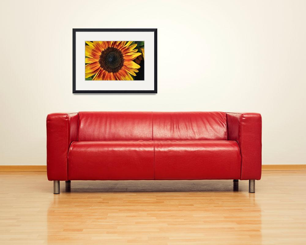 """Blazing Sunflower&quot  (2012) by julieandel"