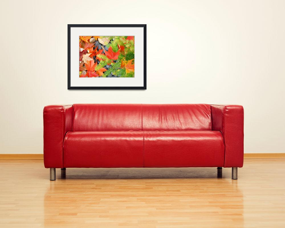 """Fall Leaves Red Orange Autumn Tree leaves prints&quot  (2010) by BasleeTroutman"