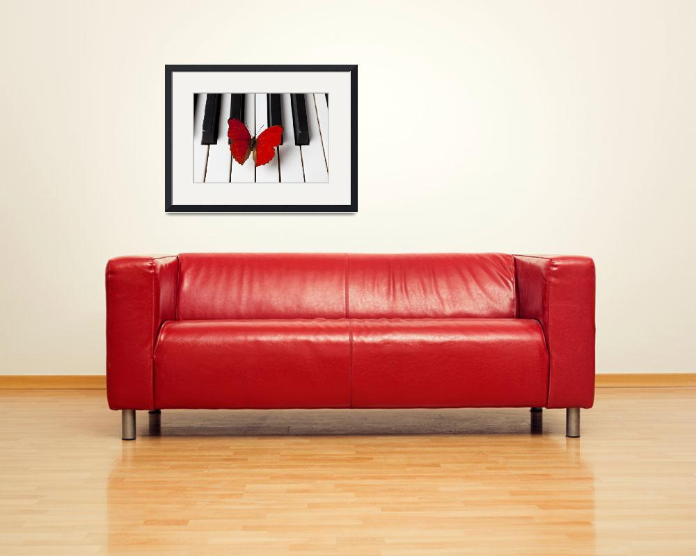 """Red Butterfly On Piano Keys&quot  (2012) by photogarry"
