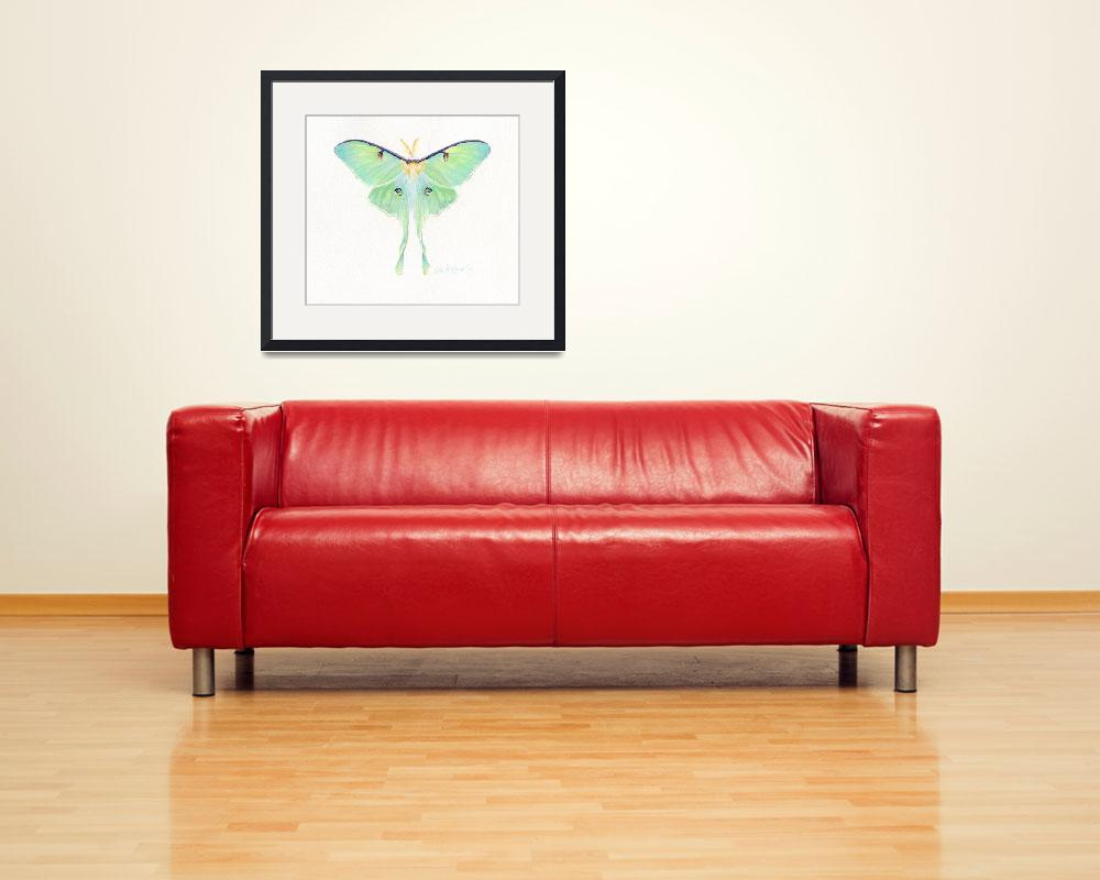 """Luna Moth&quot  (2009) by LisaMclaughlin"