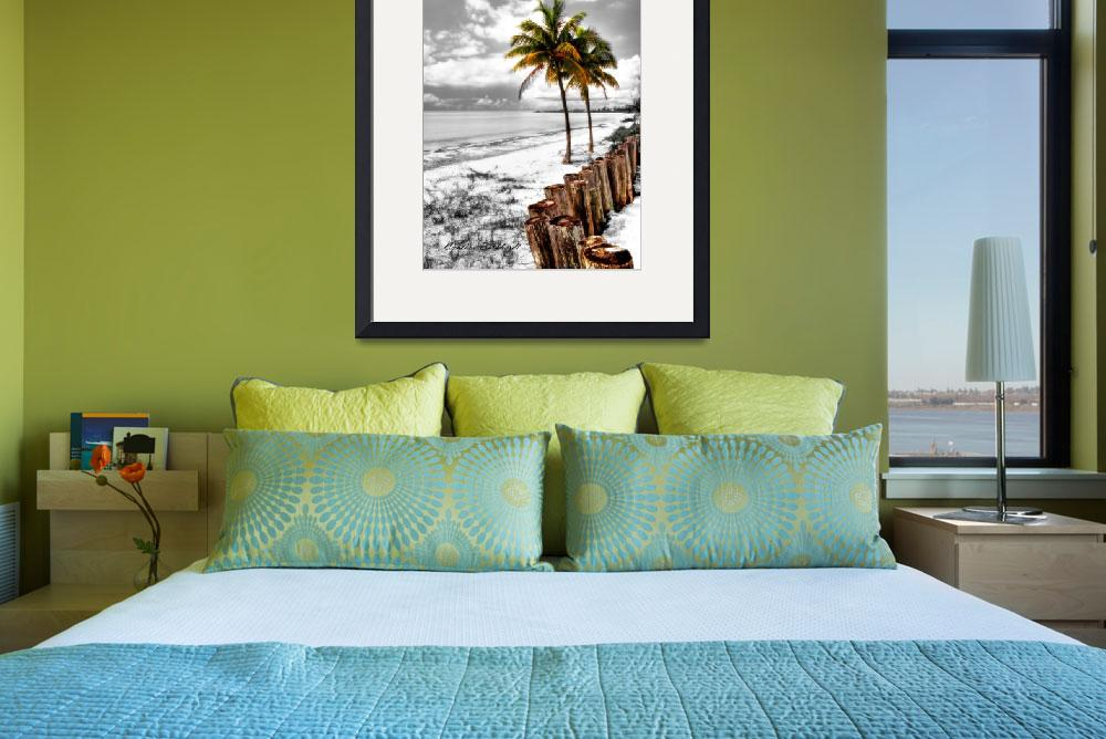"""Coastal Palms Hand Color&quot  by Cynthia_Burkhardt"