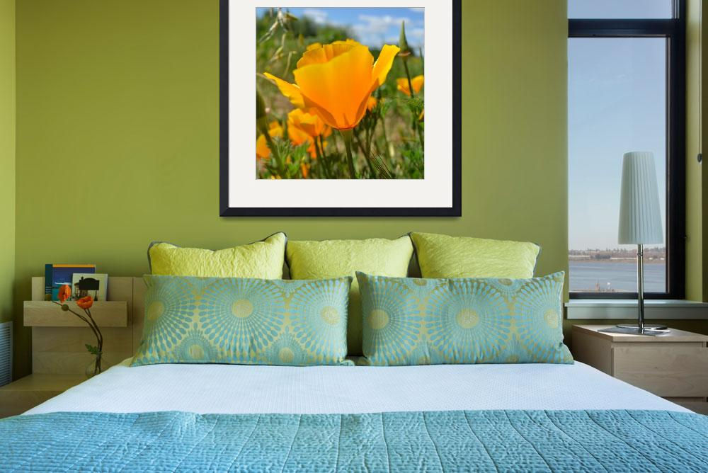 """California Poppy&quot  (2011) by PatriciaSanders"
