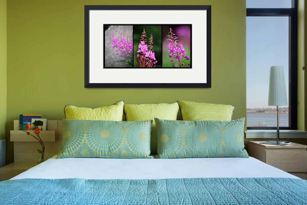 """Fireweed Series&quot  by RHMiller"
