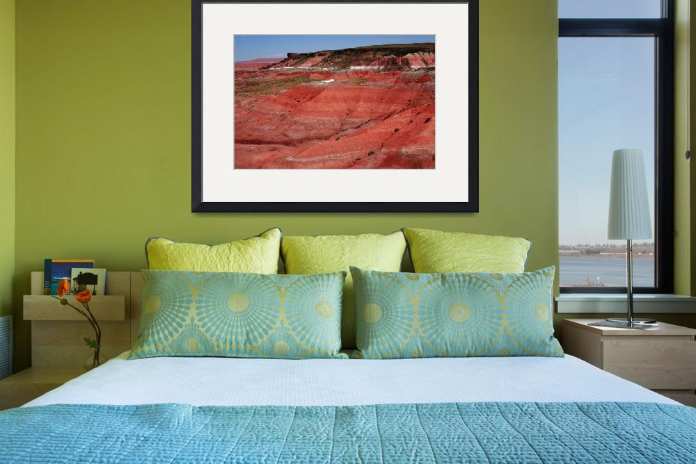 """Painted Desert&quot  (2008) by Ffooter"