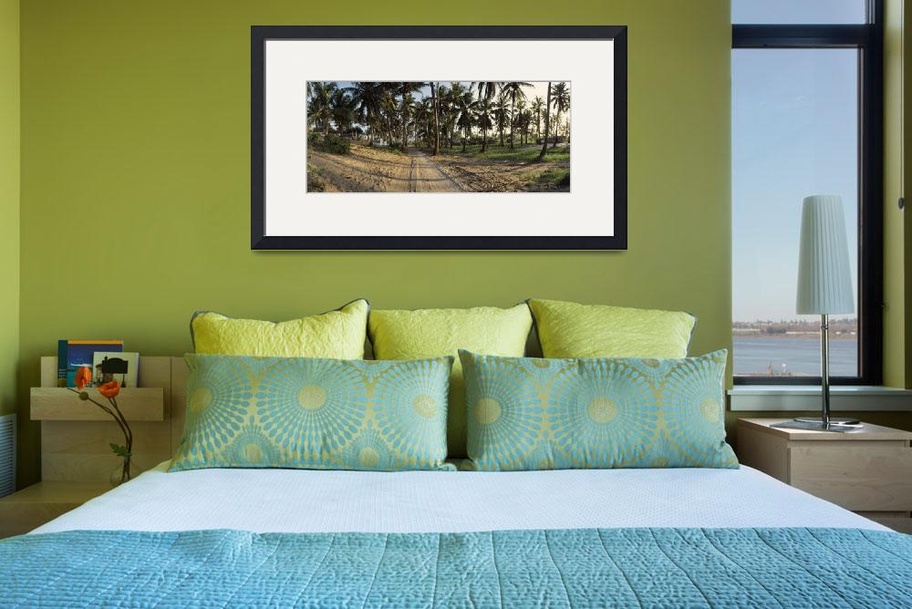 """Palm trees in a field Tofo Inhambane Province Moz&quot  by Panoramic_Images"