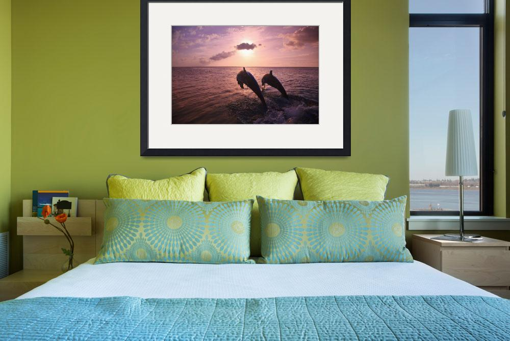"""Roatan, Bay Islands, Honduras Two Bottlenose Dolp&quot  by DesignPics"