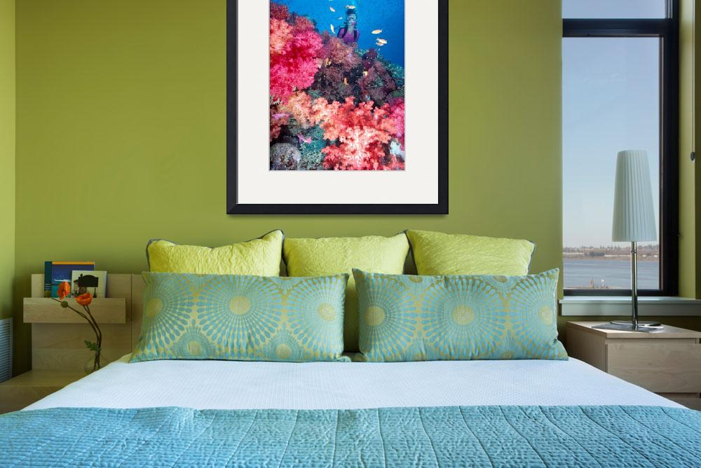 """Fiji, Diver in background of colorful soft coral r&quot  by DesignPics"