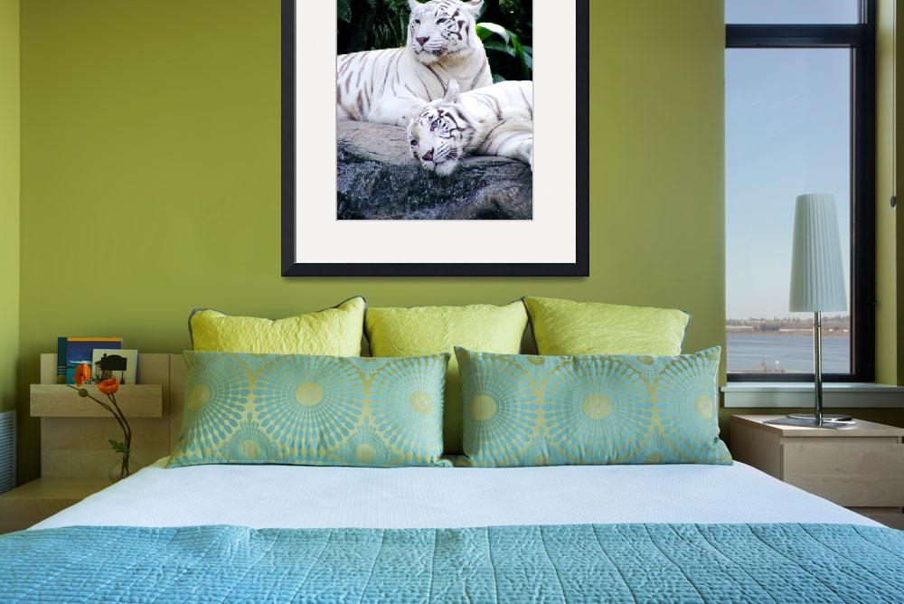 """White Tigers I&quot  (2008) by BarryJohansen"