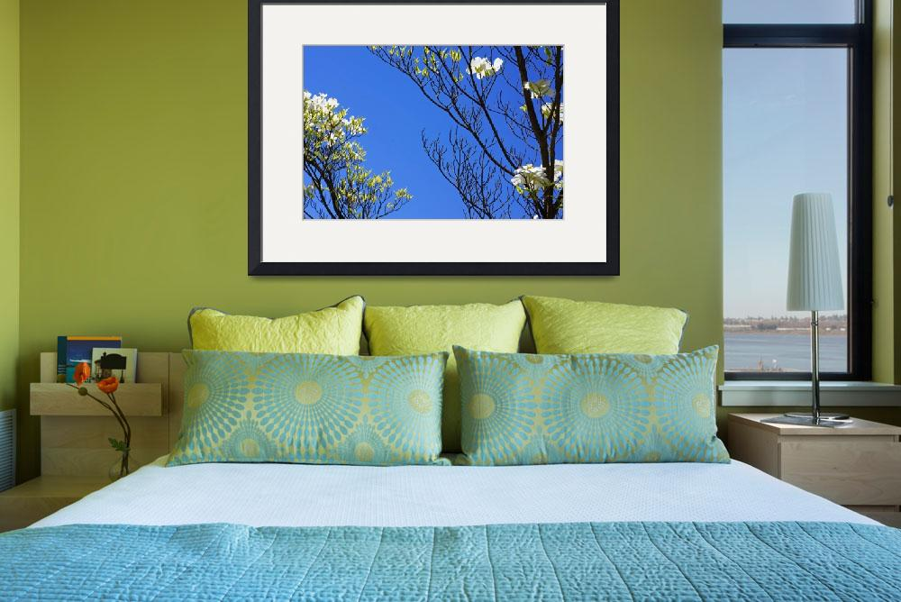 """Blue Sky Art Prints Dogwood Tree Branches Flowers&quot  (2014) by BasleeTroutman"