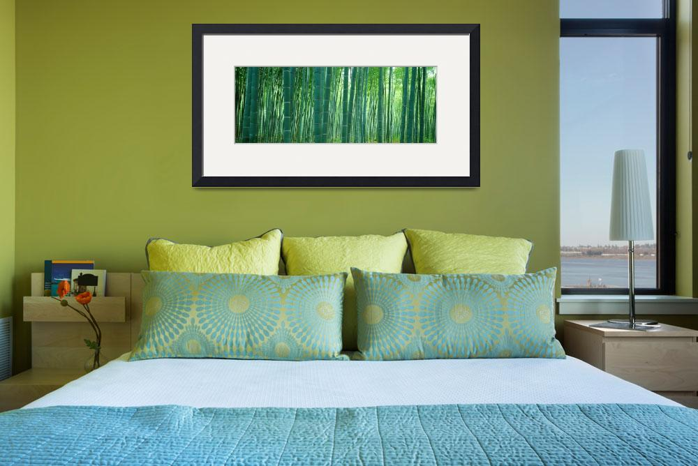 """Japan, Bamboo Forest&quot  by IK_Stores"