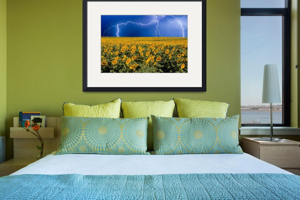"""Lightning on the Sunflower Horizon&quot  (2009) by lightningman"