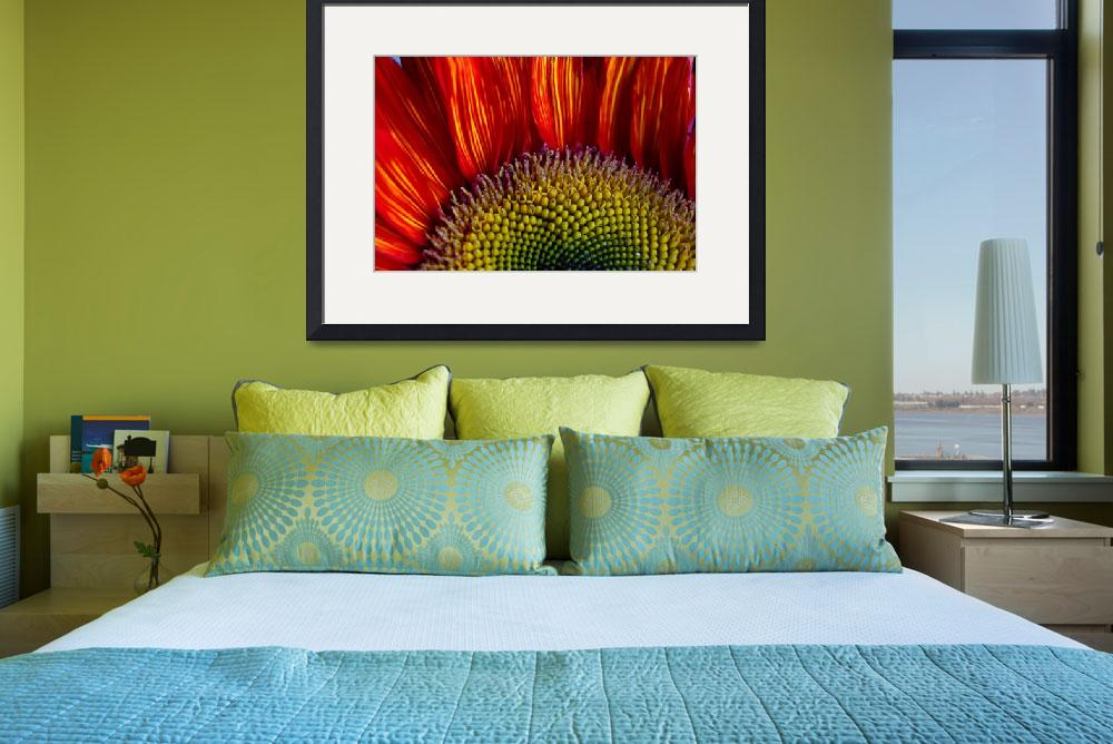 """Sunflower ""Brighter Than The Sun""&quot  (2012) by SoulfulPhotos"
