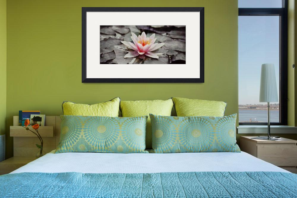 """Water Lily - ID 16217-202758-1573&quot  by lurksart"