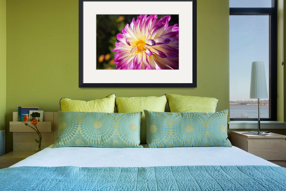 """White Purple Dahlia Flowers Fine Art Prints Gifts&quot  (2016) by BasleeTroutman"