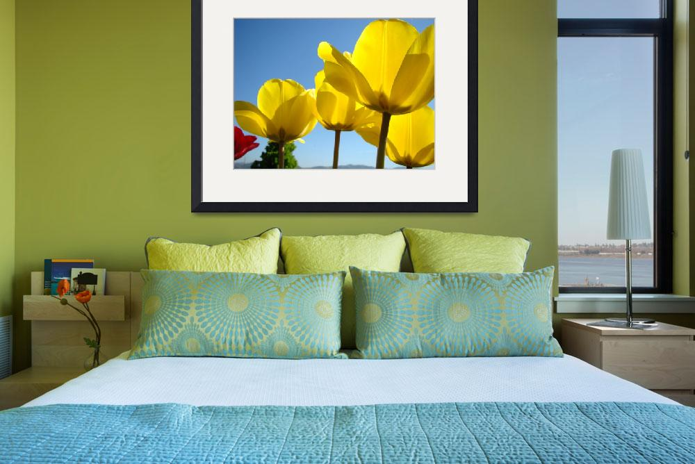 """TULIPS Spring Yellow Tulip Flowers Floral Art&quot  (2009) by BasleeTroutman"