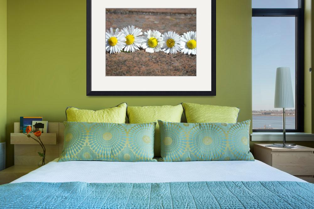 """Little Lawn Daisies Flowers Decorative Art Prints&quot  (2014) by BasleeTroutman"