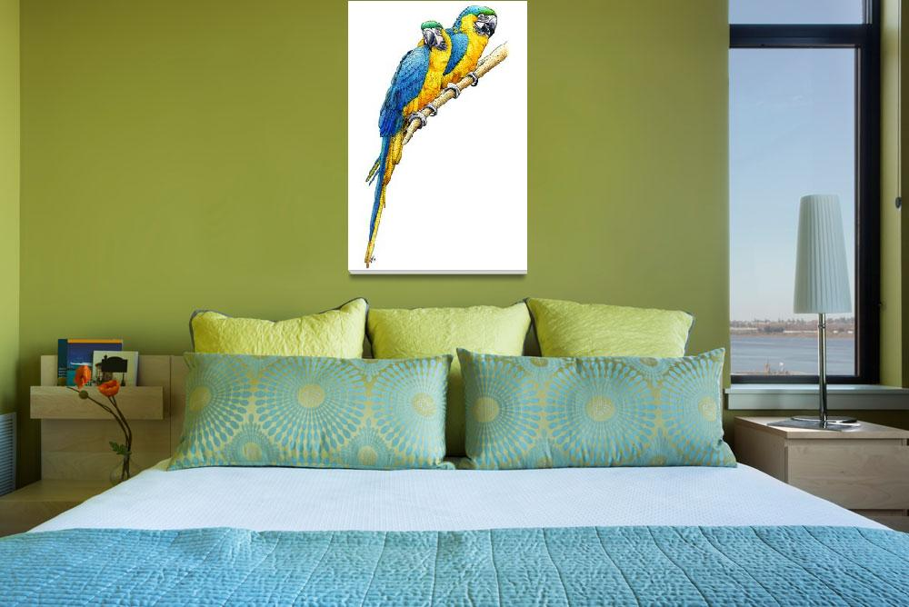 """Blue and Yellow Macaws&quot  by inkart"