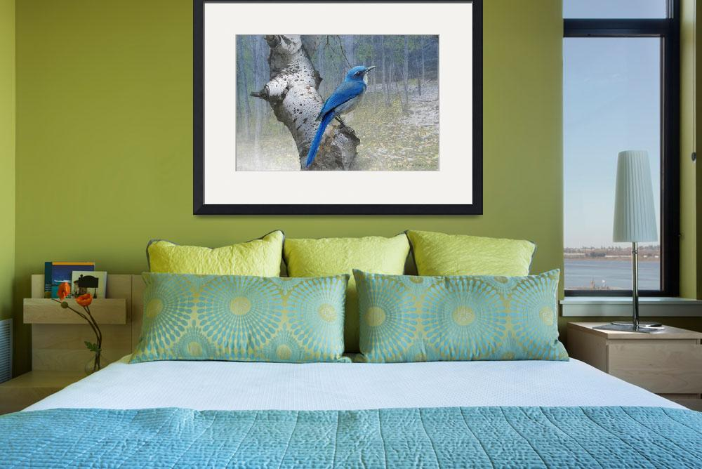 """colorado forest scrub jay&quot  (2012) by rchristophervest"