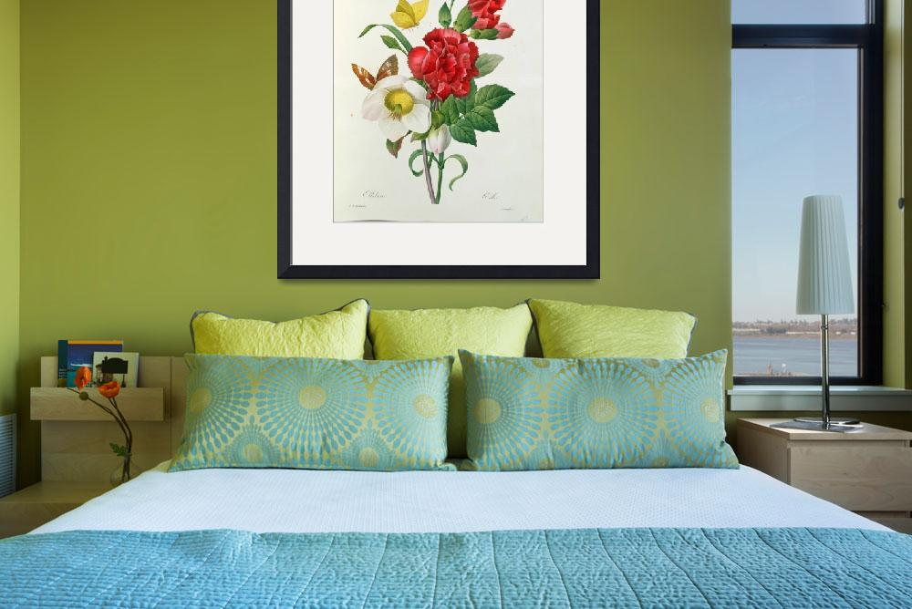 """Christmas Rose, Helleborus niger and Red Carnation&quot  by fineartmasters"