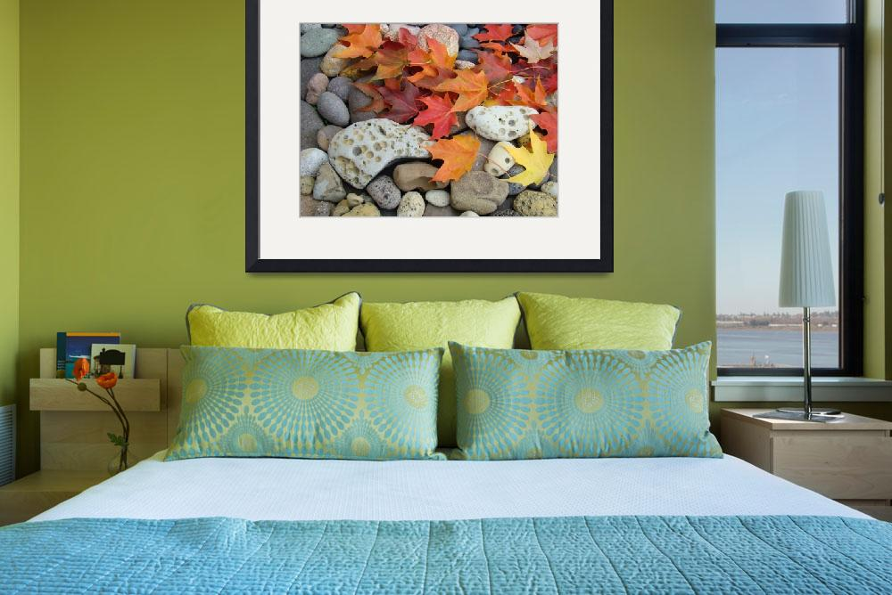 """OFFICE ART Prints AUTUMN Leaves Rock Garden&quot  (2009) by BasleeTroutman"