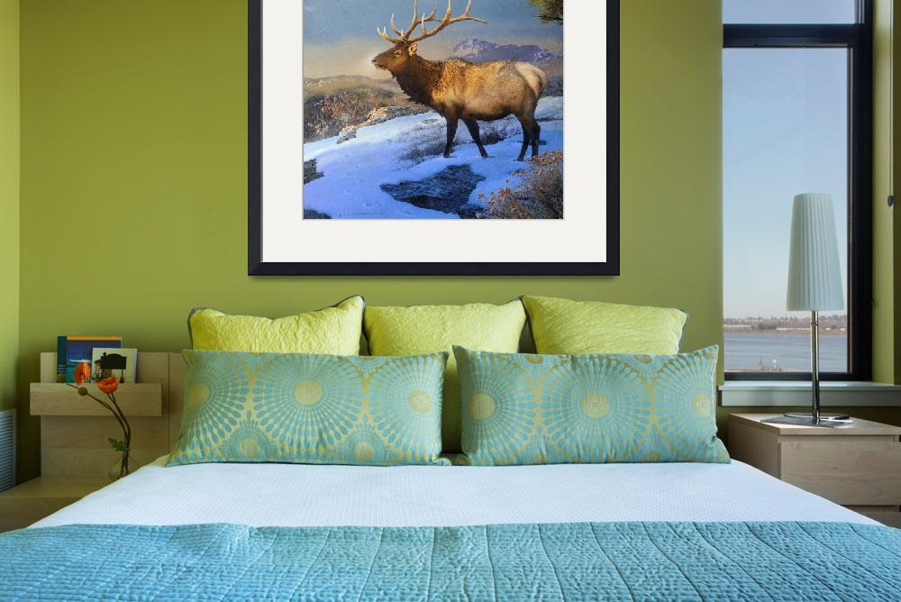 """sunset on the ridge -  bull elk&quot  (2012) by rchristophervest"