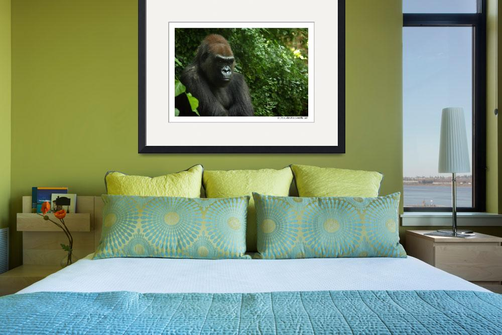 """Gorilla Portrait&quot  (2010) by WildVisuals"
