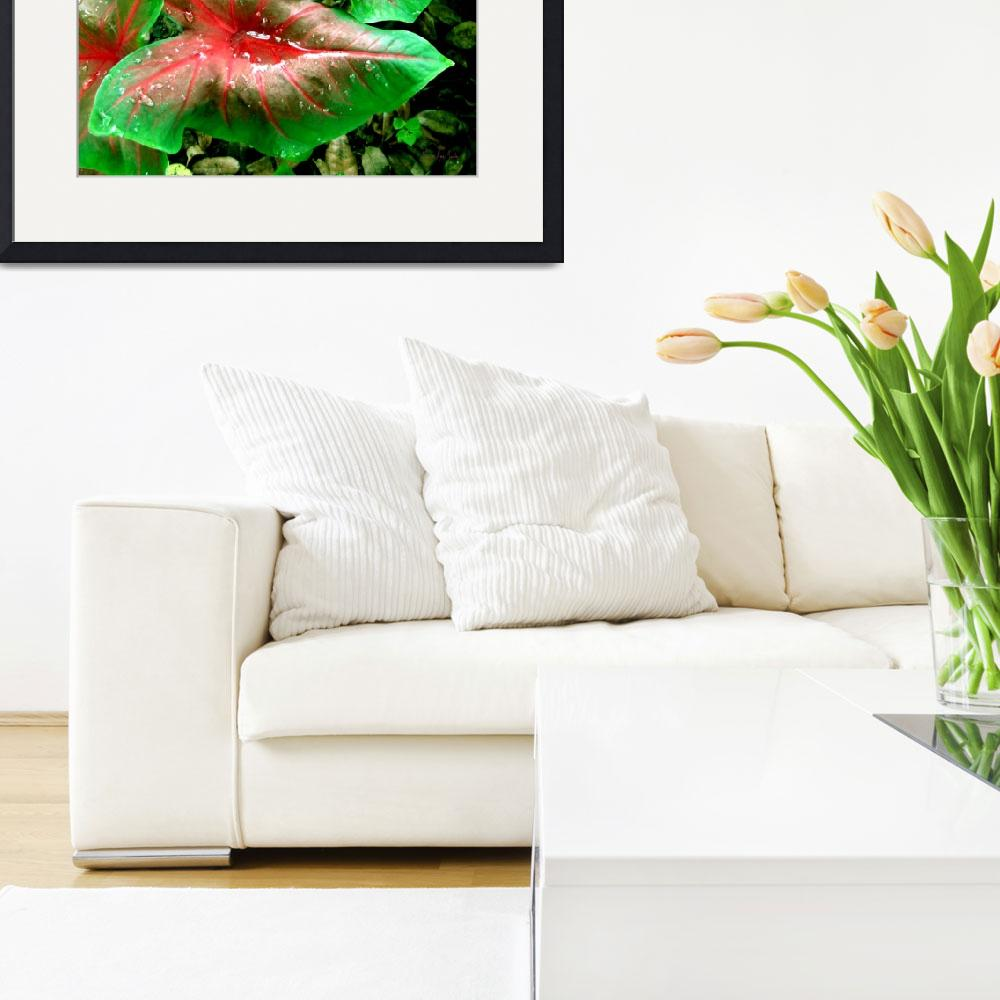"""Red Green Caladium Floral Still Life Morning Rain&quot  (2015) by MasArtStudio"