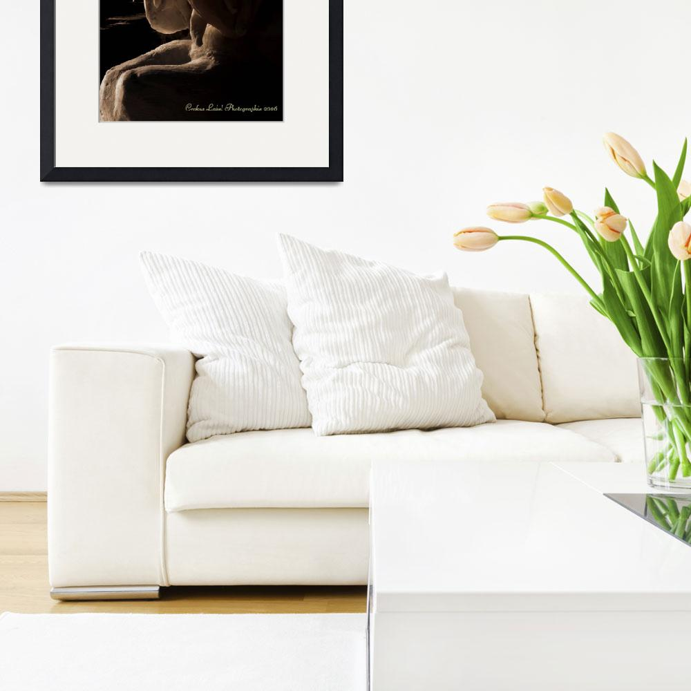 """Into The Light.&quot  by Crokuslabel"