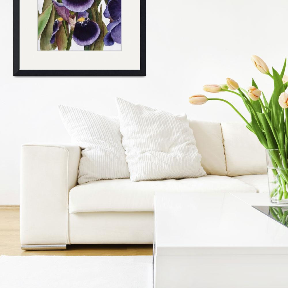 """My Iris Garden - watercolor&quot  (2008) by marygaines"