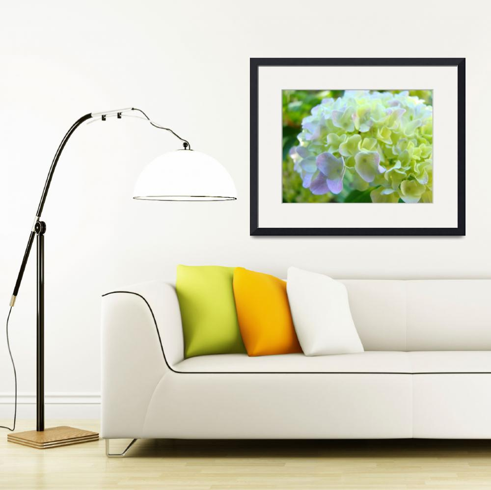 """OFFICE ART Framed Prints Hydrangea Flowers&quot  (2009) by BasleeTroutman"