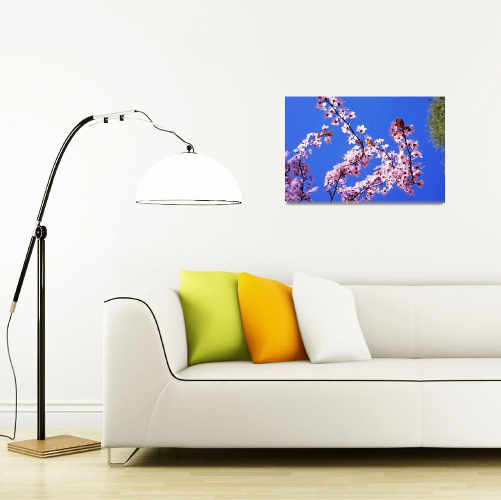 """Pink Tree Blossoms Art Prints Blue Sky Floral&quot  (2014) by BasleeTroutman"