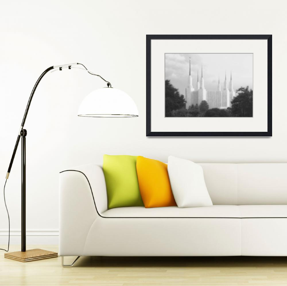 """DC Summer temple Large-16x22-BW&quot  by TerrySpringer"