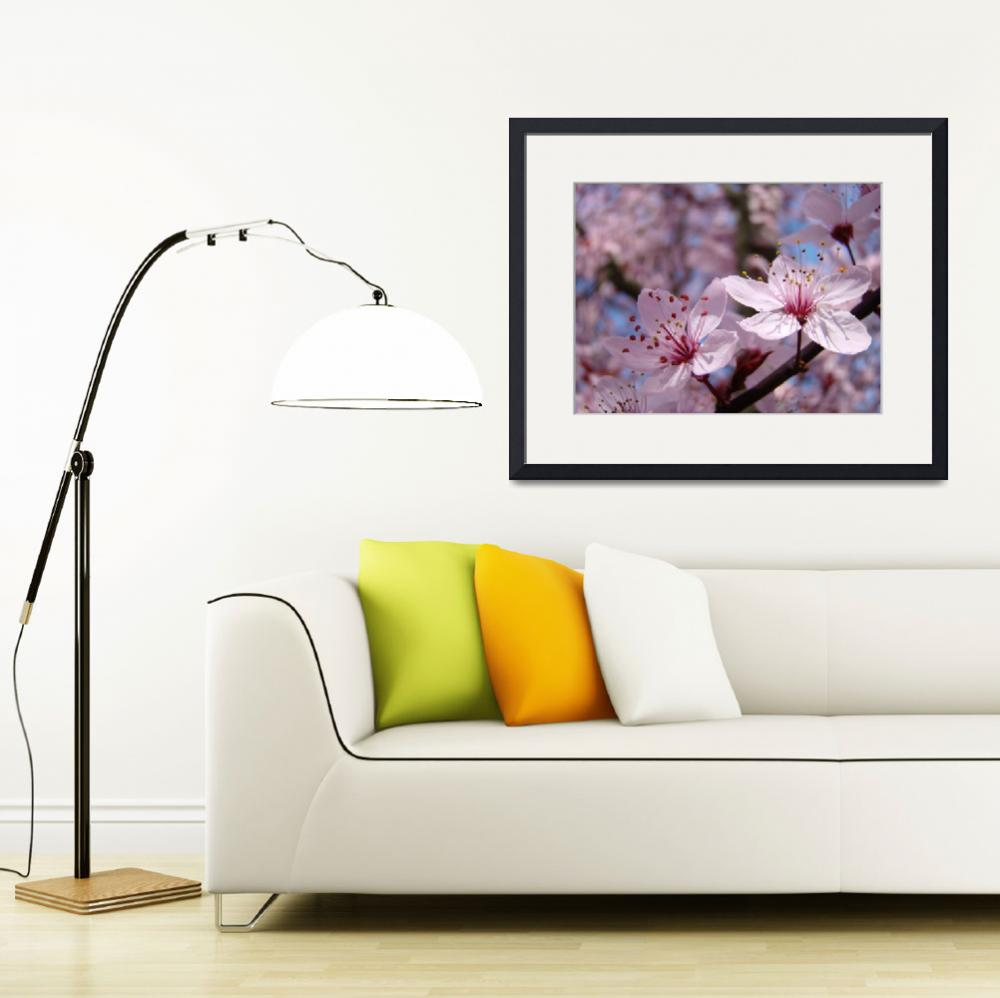 """FLORAL Art Prints PINK  BLOSSOMS Spring Flowers&quot  (2009) by BasleeTroutman"