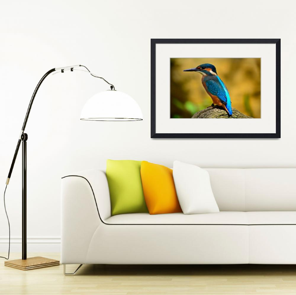 """kingfisher Bird Art Print&quot  (2016) by rogueart"