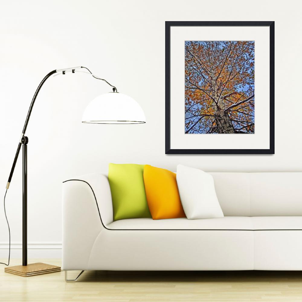 """Vail Colorado vibrant golden tree print&quot  by ArtisticAttitude"