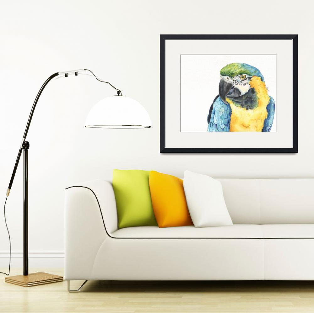 """Tango the Silly Spokesbird Macaw&quot  (2014) by Designomel"