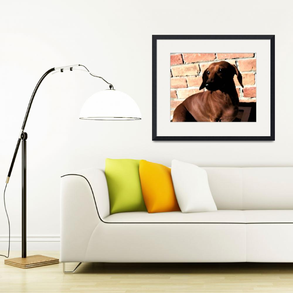 """Dachshund on Brick Background&quot  by krysshaw"
