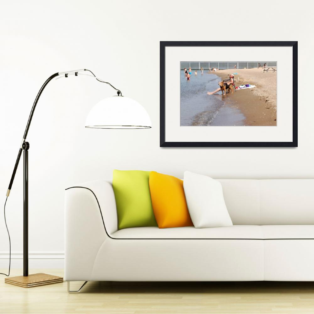 """Beach Plus My Pet Dog Equals Bliss Photo Painting&quot  (2011) by catnip009"