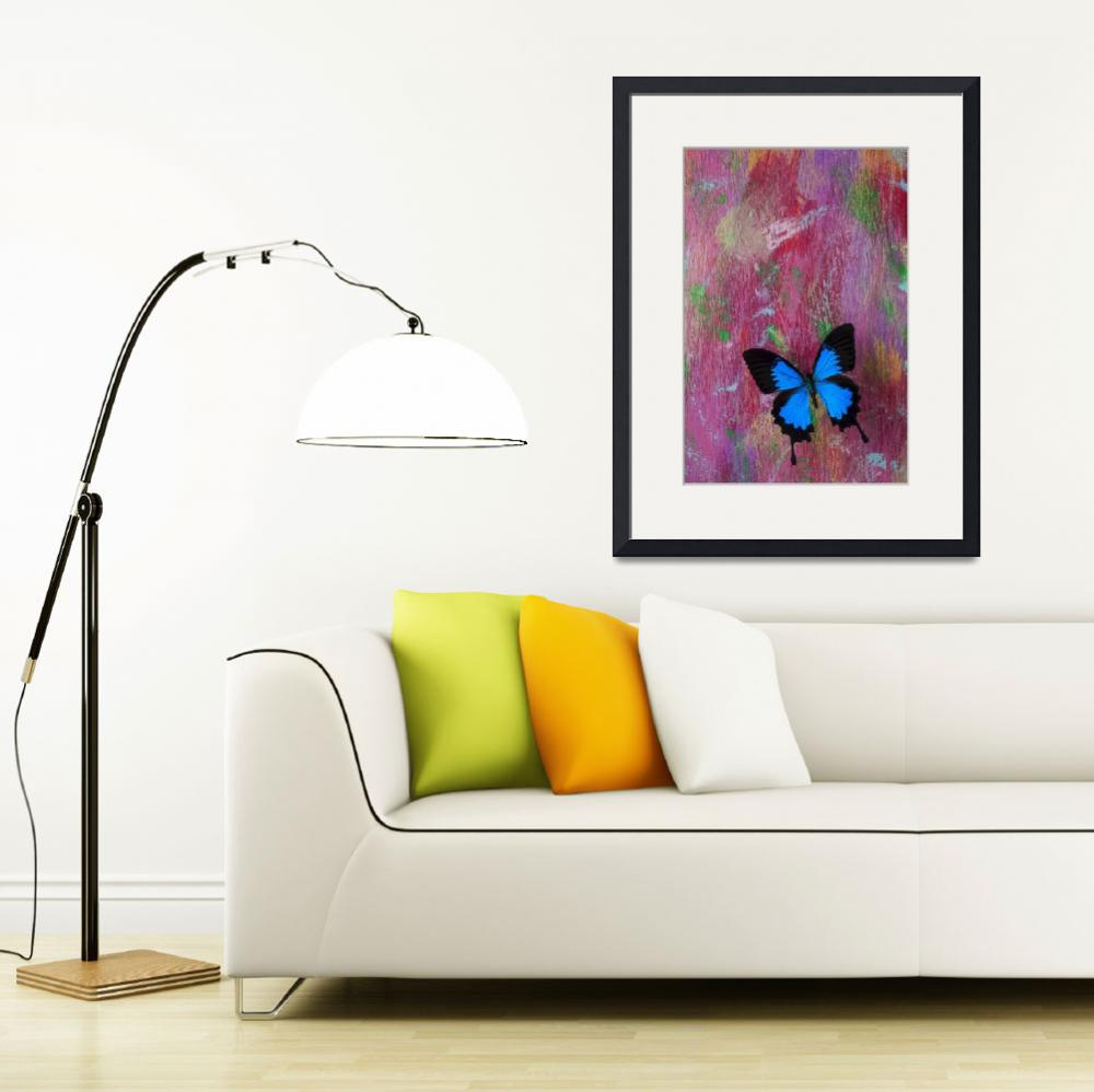 """Blue butterfly on colorful wooden wall&quot  (2012) by photogarry"