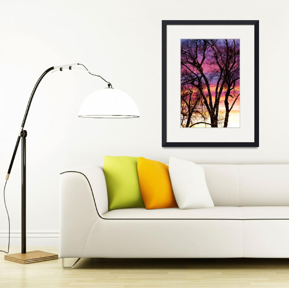 """Colorful Silhouetted Trees 33&quot  (2012) by lightningman"