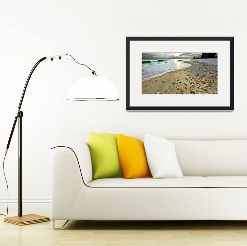 """Beach Shells Sunset Print Fine Art Landscape&quot  (2010) by eszra"