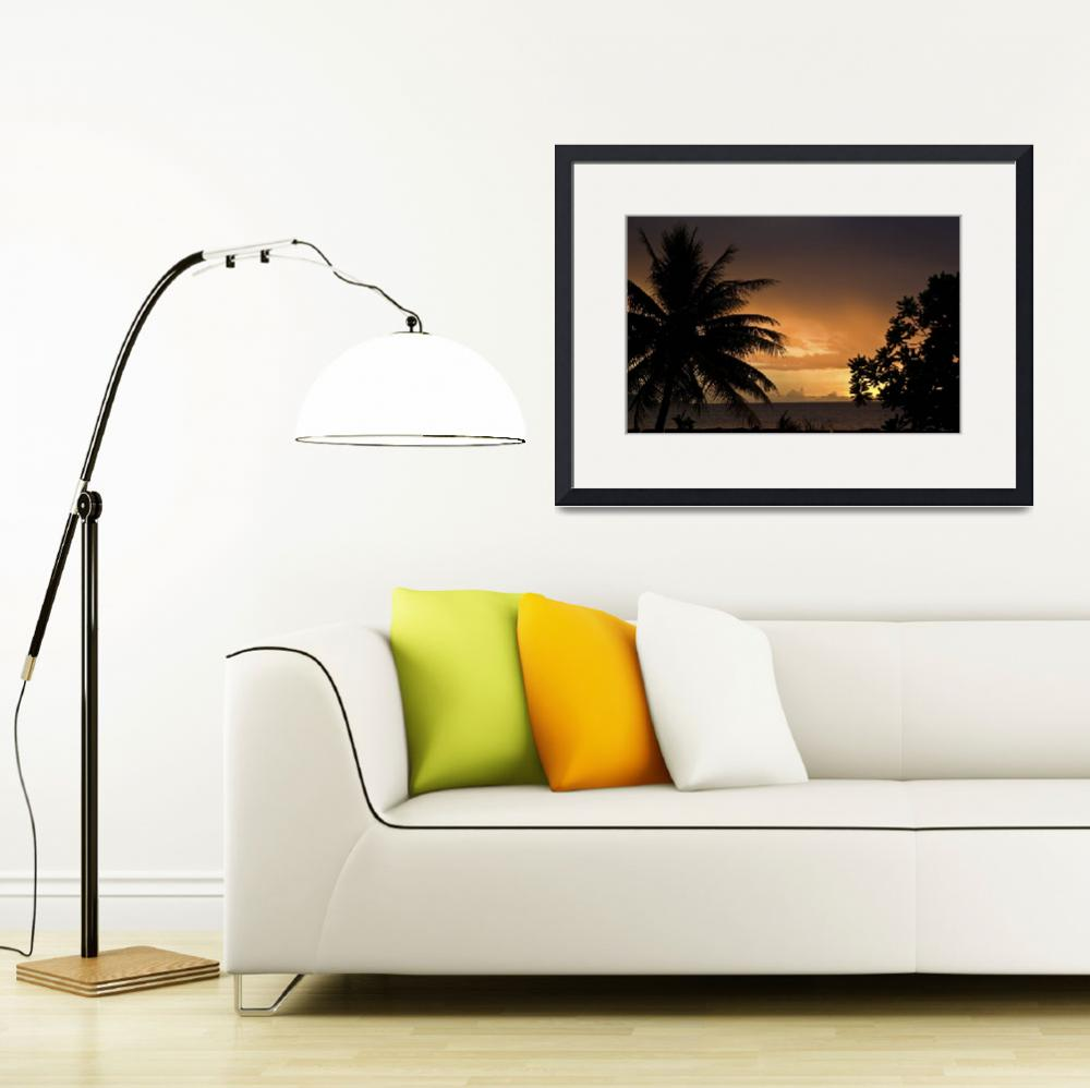 """Sunset and Palm Trees&quot  (2008) by Mac"