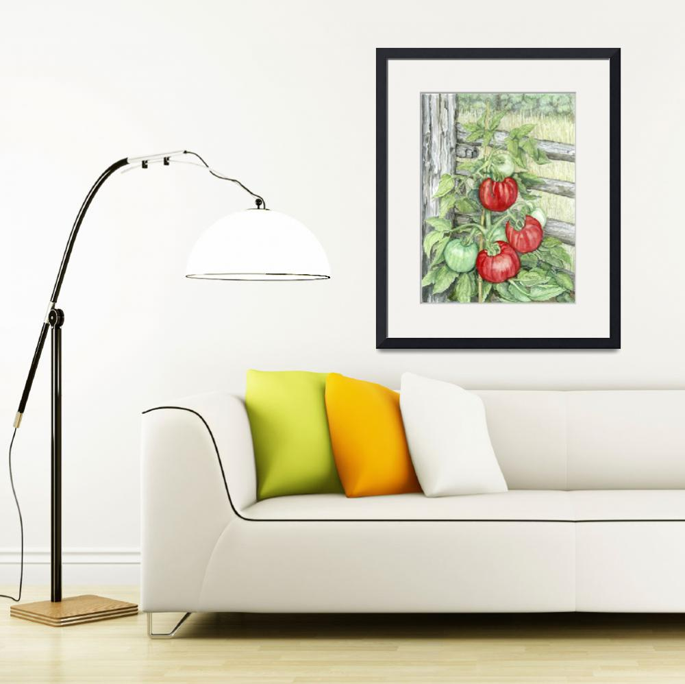 """Tomato Plant&quot  (2009) by ClotheslineArt"