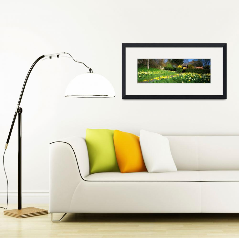 """Cottage Essex England&quot  by Panoramic_Images"