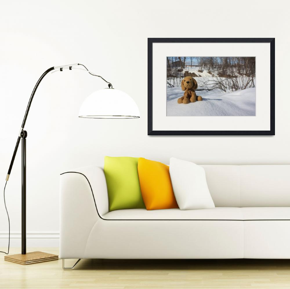 """Dog in snow&quot  (2010) by Albertphoto"