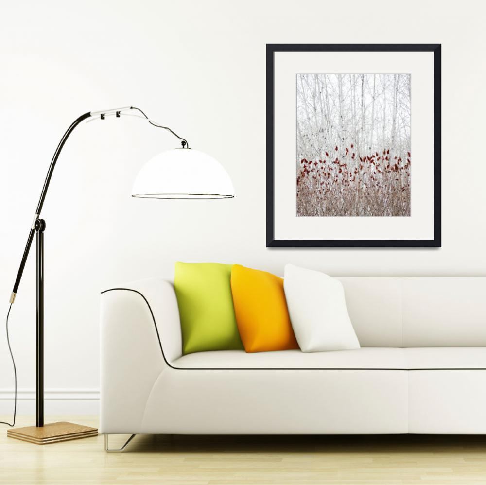 """Birch with Sumac&quot  (2008) by Trailheads"